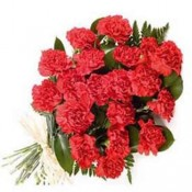 24 Red Carnations Bunch