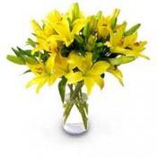 Royal Lilies