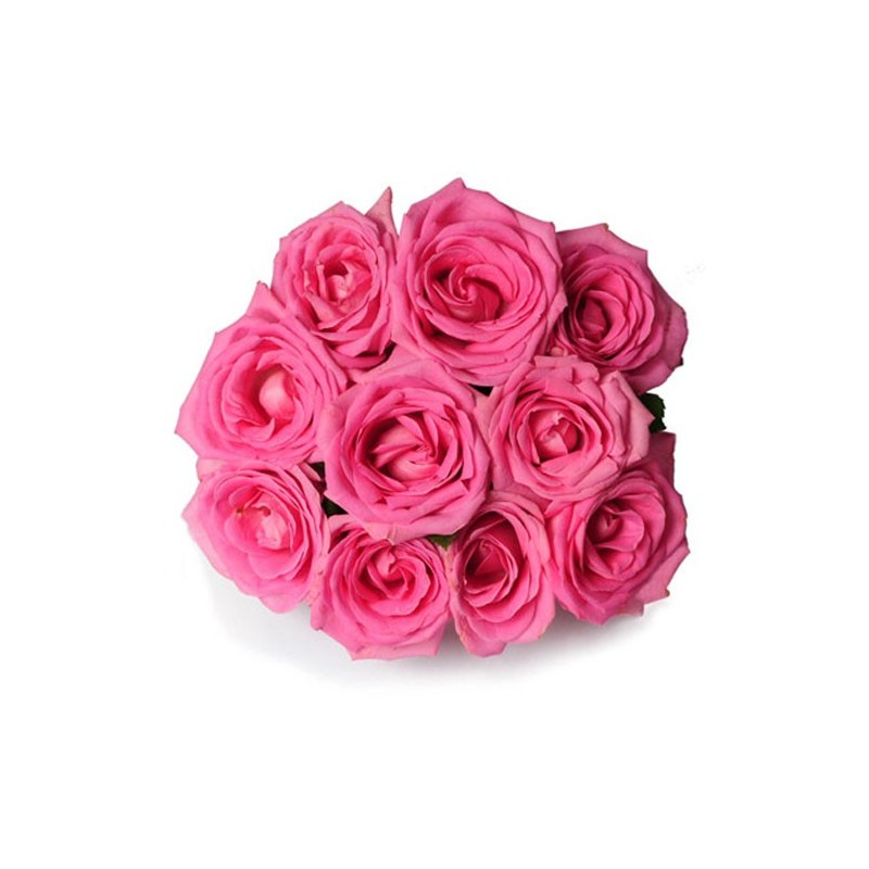 10 Pink Rose Bunch