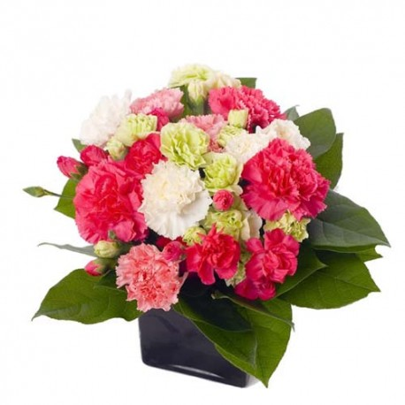 Vase of Colorful Carnations for Valentine