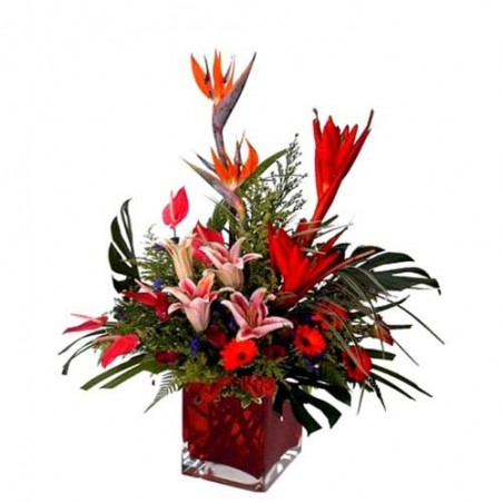 Twenty Five Exotic Flowers for Love
