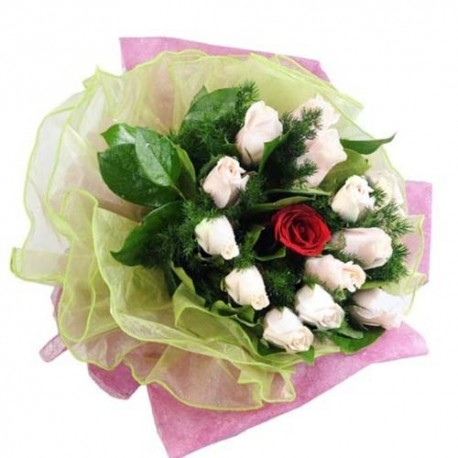 Valentines Day Gift of Colorful Carnation