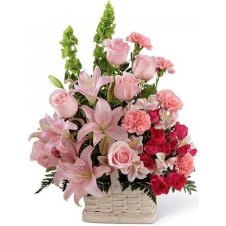 Freshness of Pink Roses For Valentine