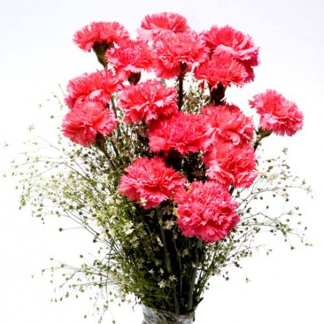 Tower of Love carnations