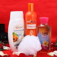 Bio Care Grooming Hamper for Female