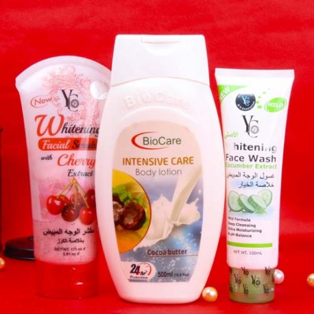 Bio Care Beauty Grooming Kit for Female