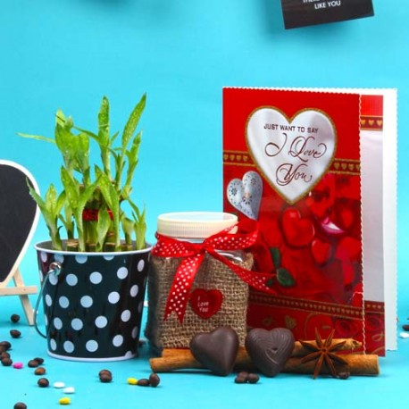 Valentines Day Special Chocolate and Good luck Bamboo Plant Combo
