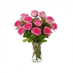 Sensuous Pink Roses