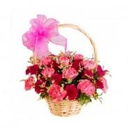 Basket of Carnation
