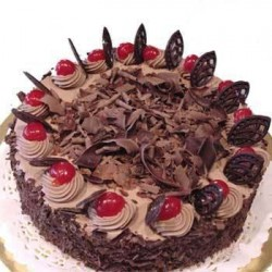 Chocolate Truffle Cake - 1kg (The Cake World)
