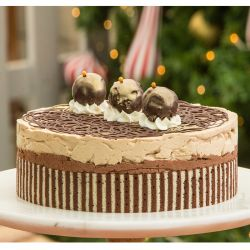 Espresso Chocolate Mousse - 1 kg (Sweet Chariot)