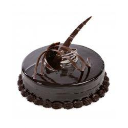 Chocolate Truffle (Universal Bakery)