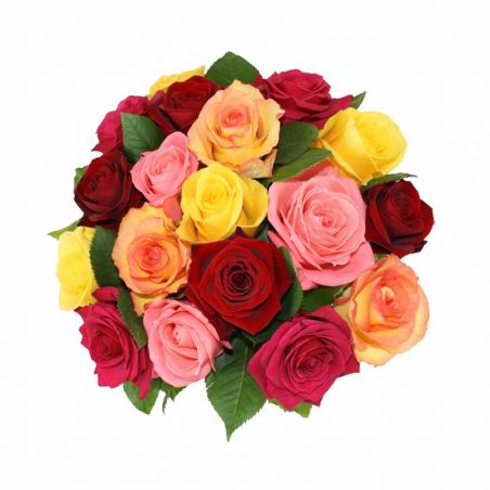 24 Mixed Rose Bunch