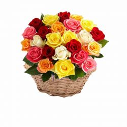 25 Multi Colour Rose Basket