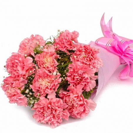 10 Pink Carnation Bunch