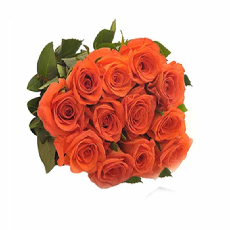 12 Orange Rose Bunch
