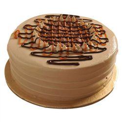 Hazelnut Chocolate  Cake 1 kg
