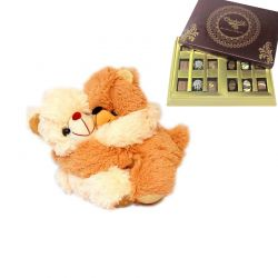 Hug Teddy with Chocolates