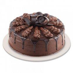 Chocolate Cake  - 2 Pound...