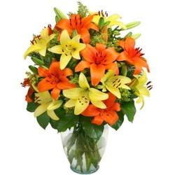 Colors Of Lilie