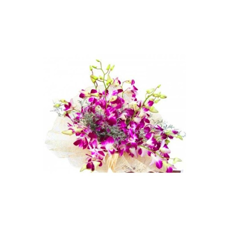 Purple Special
