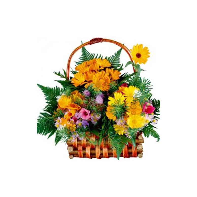 Send Flowers to Gurgaon  Online Florist in Gurgaon