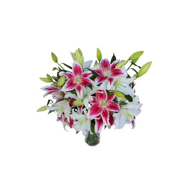 Sweet Lillies