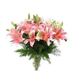 Lili blooms