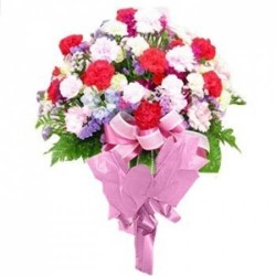 24 Mixed Carnations Bunch