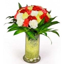 30 Mixed Carnation Vase