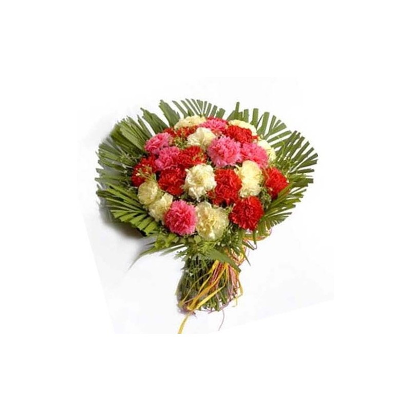 20 Mixed Carnations Bunch