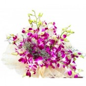 6 Purple Orchid bunch