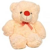 Adorable Soft Teddy