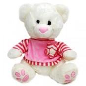 Gentle Teddy