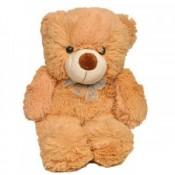 Cuddly Teddy