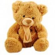 Friendly Teddy