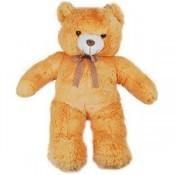 Beautiful Teddy