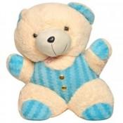Enjoyful Teddy