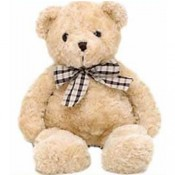 Teddy with Tie