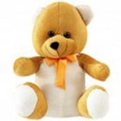 Pretty Teddy