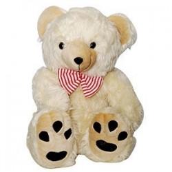 Fantastic Teddy