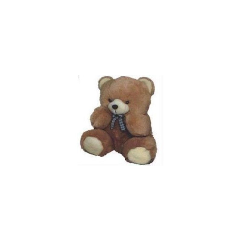 Wonderful Teddy