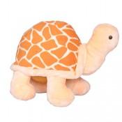 Tortoise 25 cms