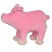 Pig 24 cms