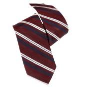 Silk Ties 065 12