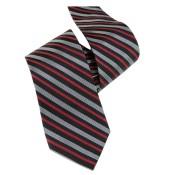 Silk Ties 004 16