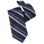 Silk Ties 065 16