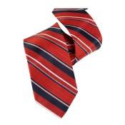 Silk Ties 070 12