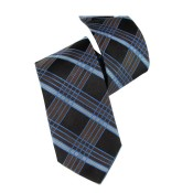 Silk Ties 087 11