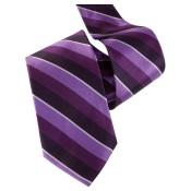 Silk Ties 0012 12